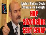 Bakan Soylu'dan HDP sözcüsüne sert cevap