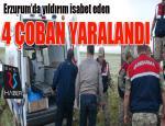 Erzurum'da yıldırımın isabet ettiği 4 çoban yaralandı
