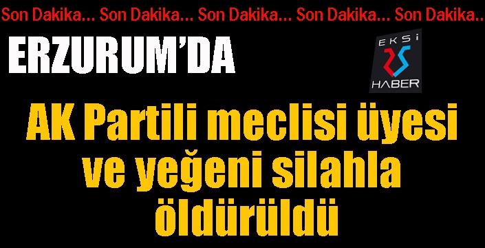 AK Partili meclisi üyesi ve yeğeni silahla öldürüldü