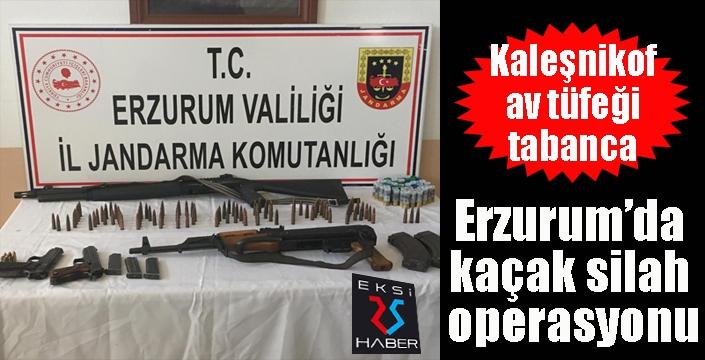 Erzurum'da kaçak silah operasyonu