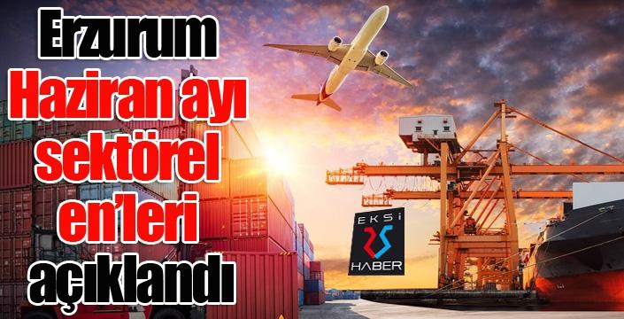 Erzurum Haziran ayı sektörel en'leri açıklandı